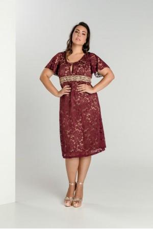 Φόρεμα Δαντέλα Κοντό με Τρέσα